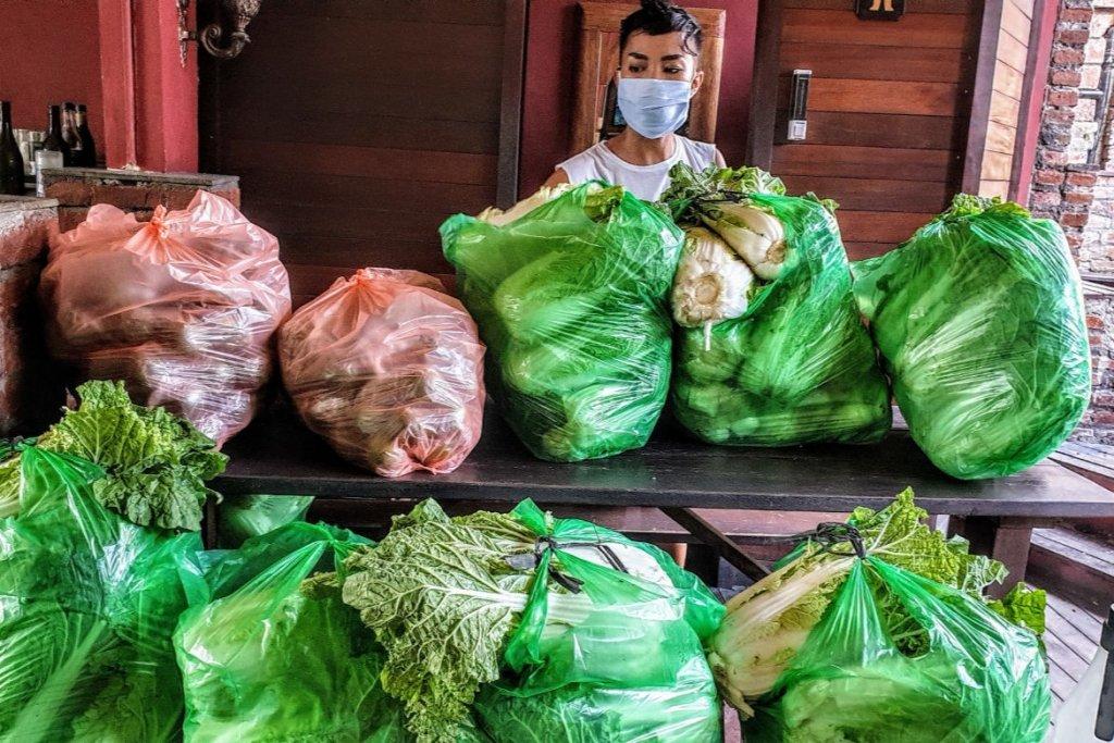 Vegetable Supplies - Bali Musicians Appeal